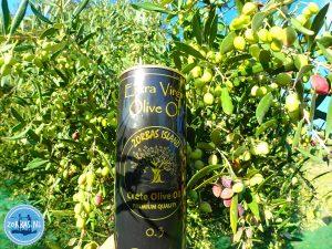 gezondheidsvoordelen van olijfolie uit Kreta